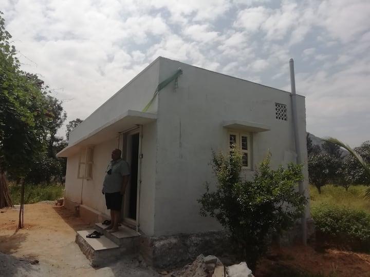 Farm house amidst a mango orchard