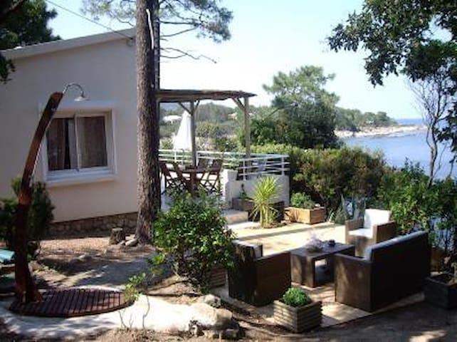 villa pieds ds l'eau pres P Vecchio - Sari-Solenzara - Dom