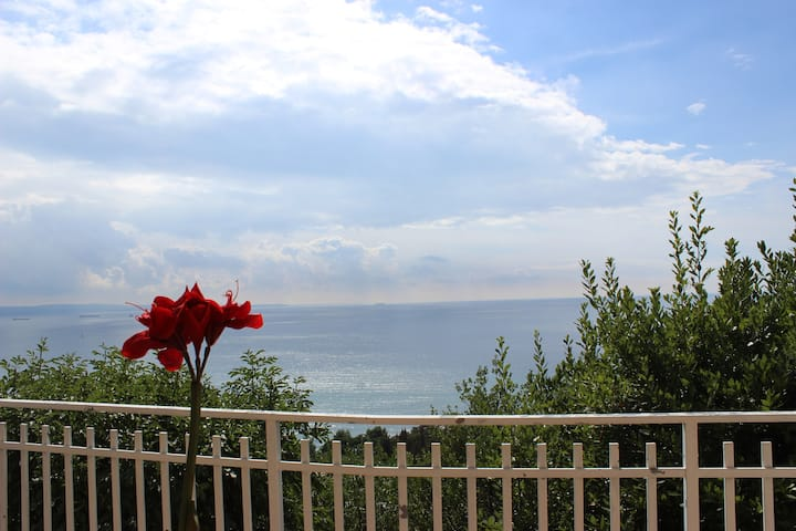 Eco Design Trieste - Terrace on the sea