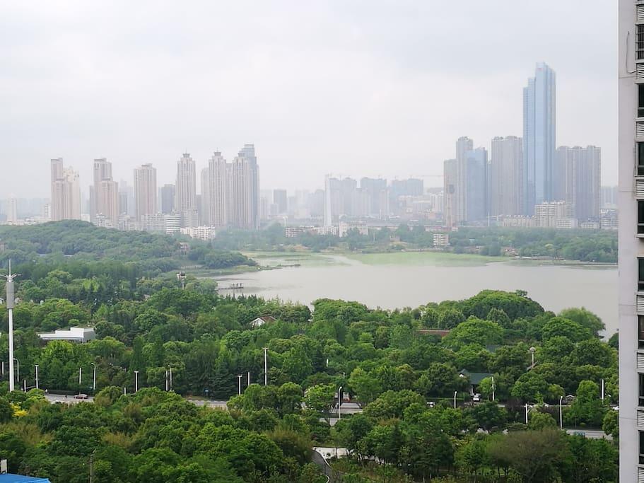 推开窗,望琴台公园,品月湖之美 高山流水觅知音……