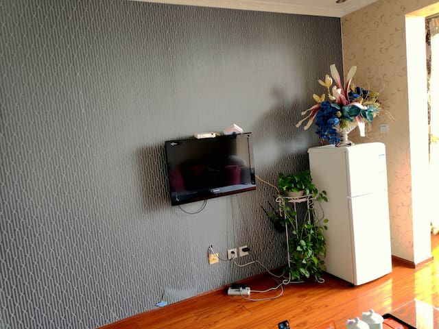 客厅电视及冰箱