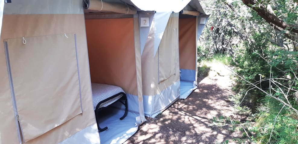 Double bed private bungalow tent