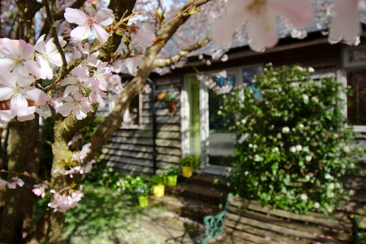 Cissbury Cottage perfect for the South Downs - Steyning - Bungalov