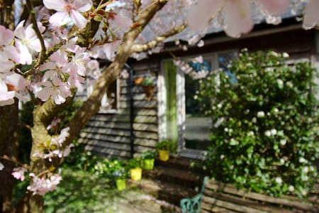 Cissbury Cottage perfect for the South Downs - Steyning - 小平房