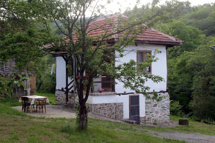 Zatizov home -Radlovtsi in  Kyustendil region