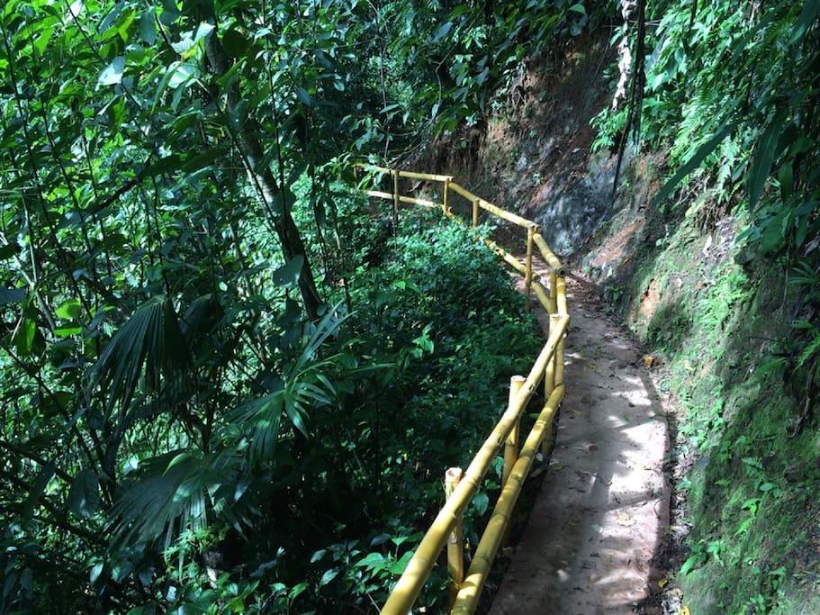 Concrete Nature Paths in Private Community River Park