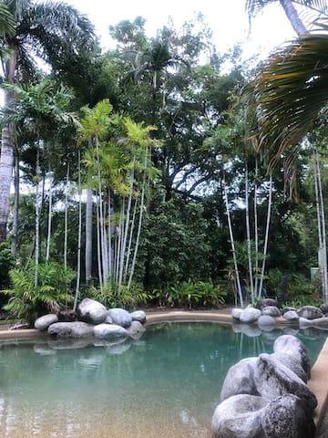Pool area, in the tropics