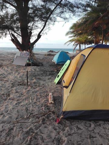 Eco beach club