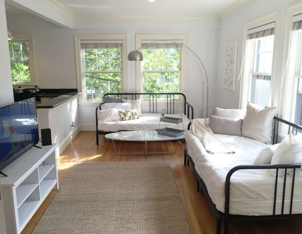 Bright & Clean 1 Bedroom Apartment Downtown