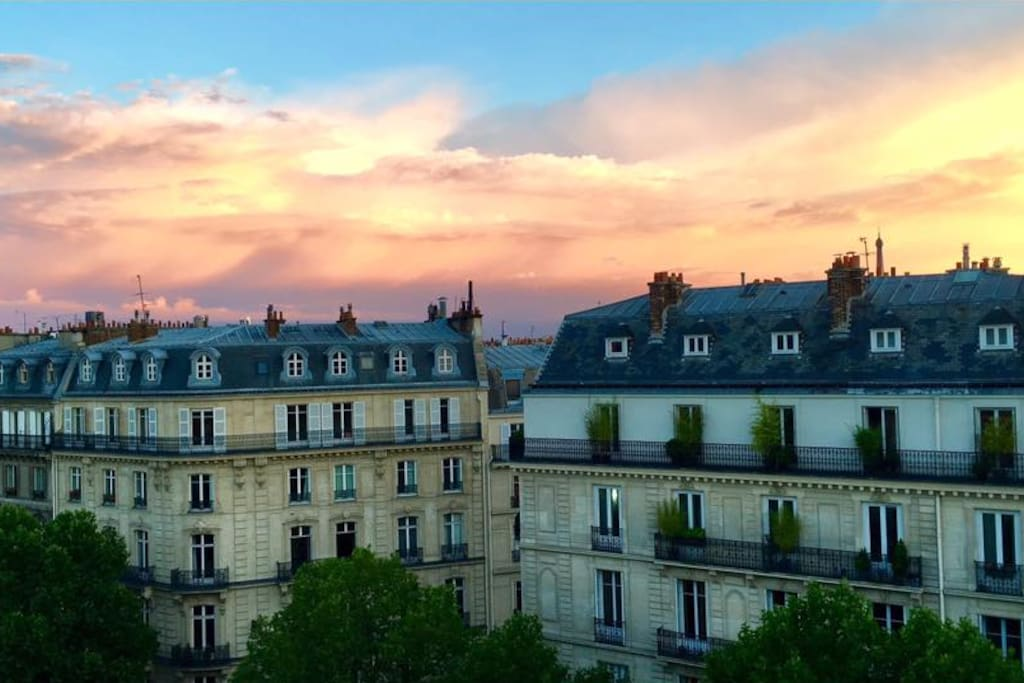 Paris roofs view
