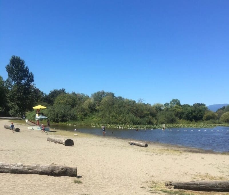 The beach and swimming area in the Trout Lake 5 minutes from my house.