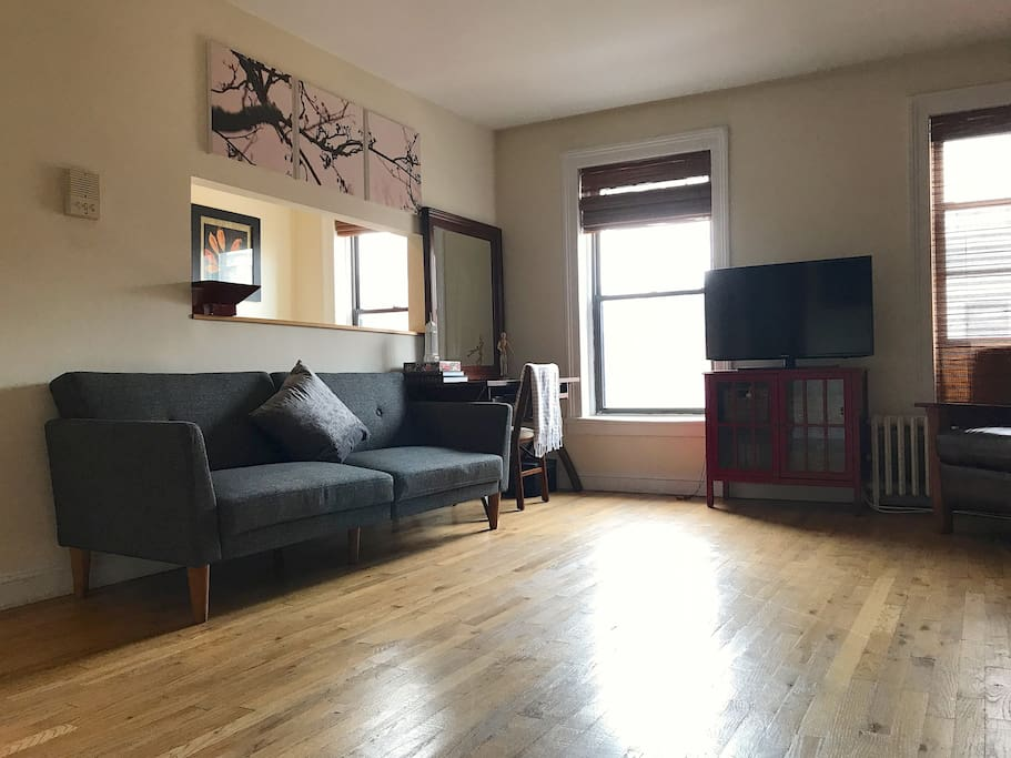 Spacious Williamsburg One Bedroom Apartments For Rent In Brooklyn New York United States