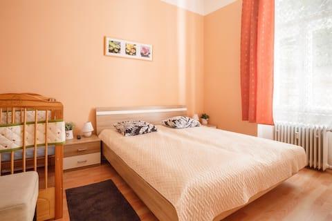 Two-bedroom apt.5 min from kolonada