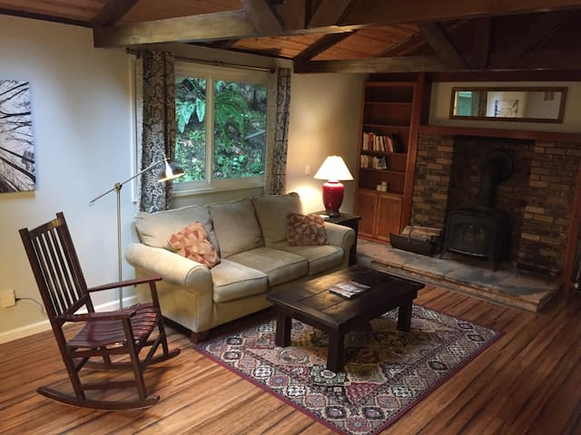 Mountain Retreat w/ Great Central Location - Scotts Valley - Dom