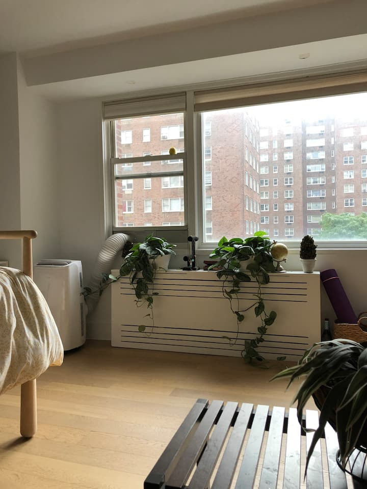 Harlem Oasis Studio Apartment