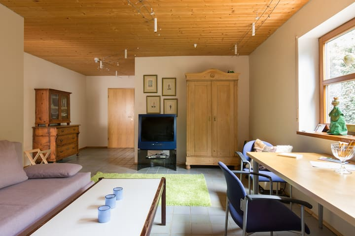 Wohnzimmer mit Blick zum Eingang