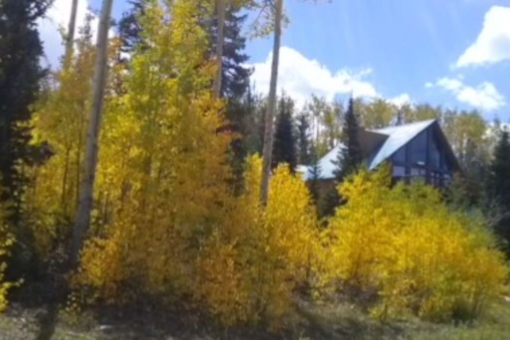 Cabin w/Fall colors