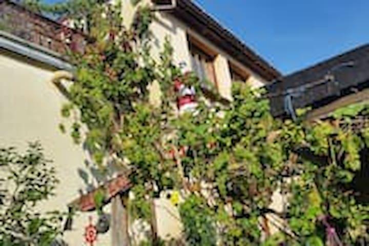 Haus am Stadtrand von Wismar xl bis 12 Personen - Wismar - Ev