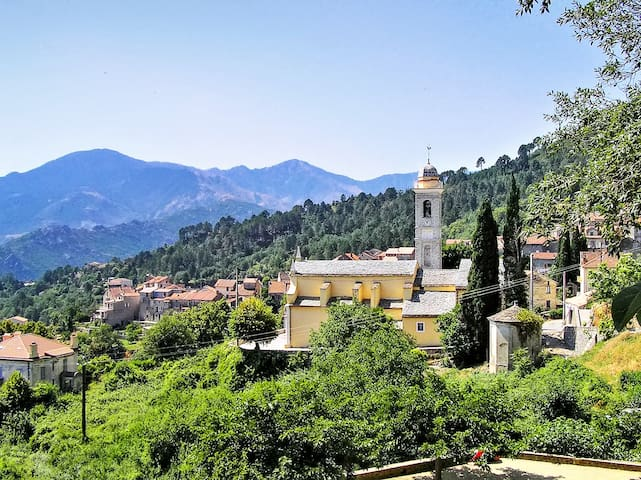 Spacious apartment w/mountain view - Venaco - Appartement