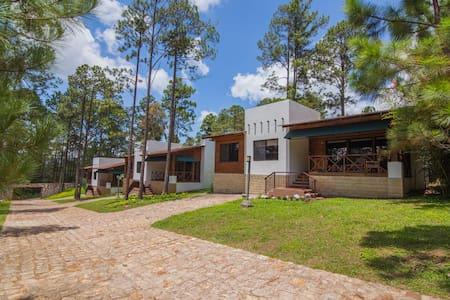 Pinos Lodge 101
