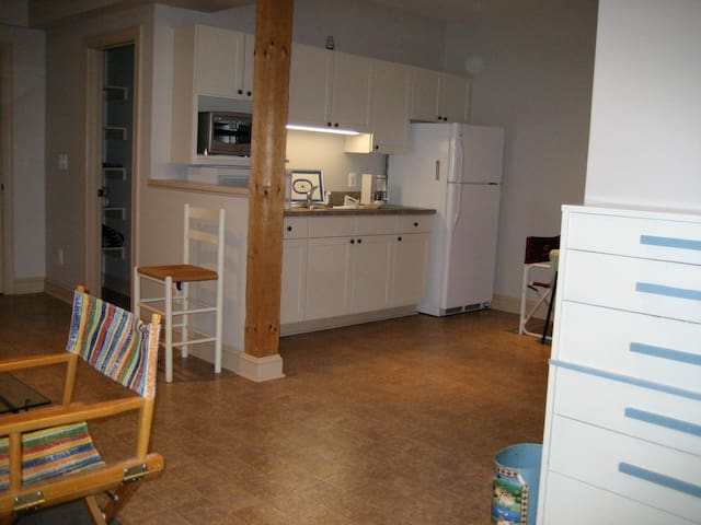 Convenient, Walk-Out Basement Efficiency Apartment - Hamilton - Apartment