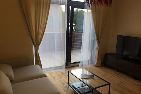 Apartament in Palanga 500 m to  the Baltic sea