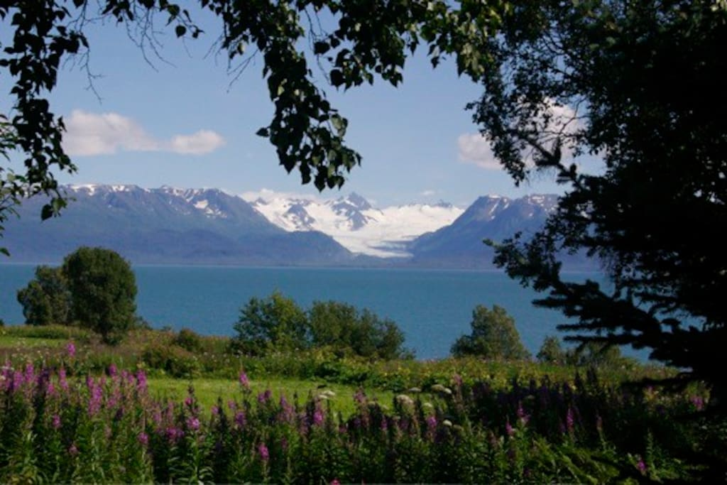The amazing view of the Kenai Mountains and Kachemak Bay!
