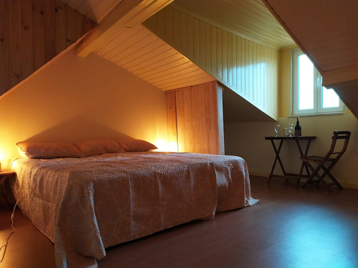 Romantic privat room at historical center