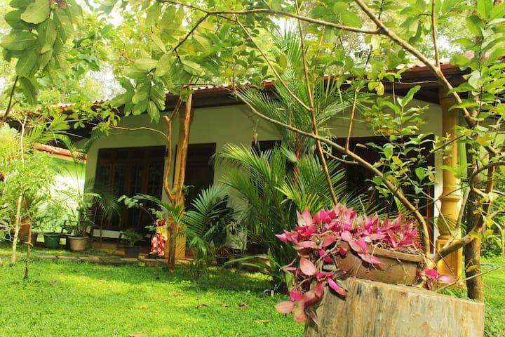 Sigiriya Ranasinghe Nature Villa  01