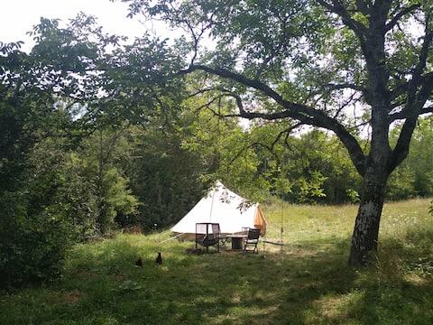 Tente nomade au coin du noyer