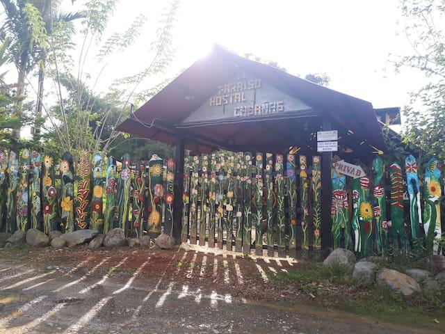 Hostal Paraíso: Cabañas y Cascadas