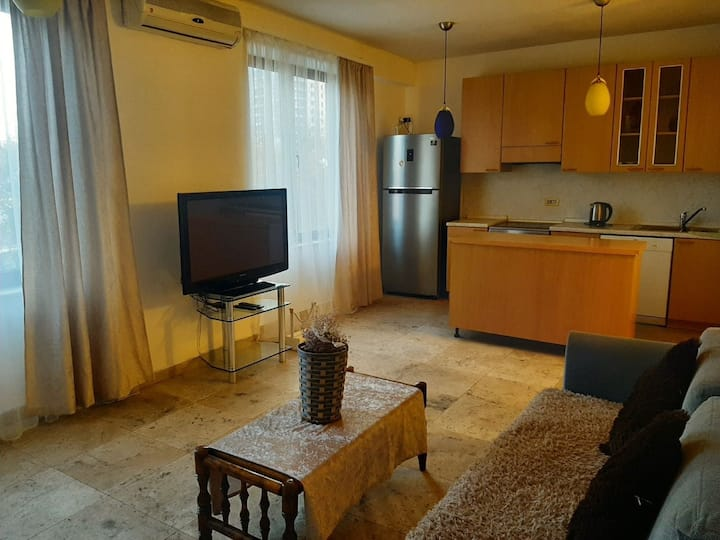 Standard apartment in the centre of Yerevan