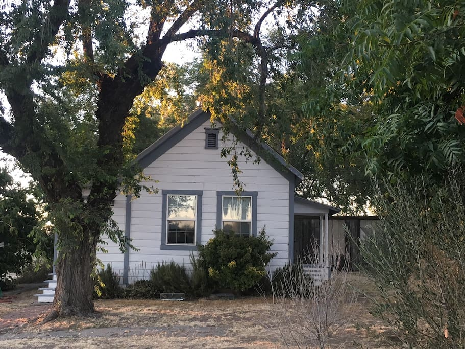 The old homestead, built in 1860, is just 450 square feet. Homesteading charm, with no modern facilities, and lots of bird and animal life around. Not for city dwellers.