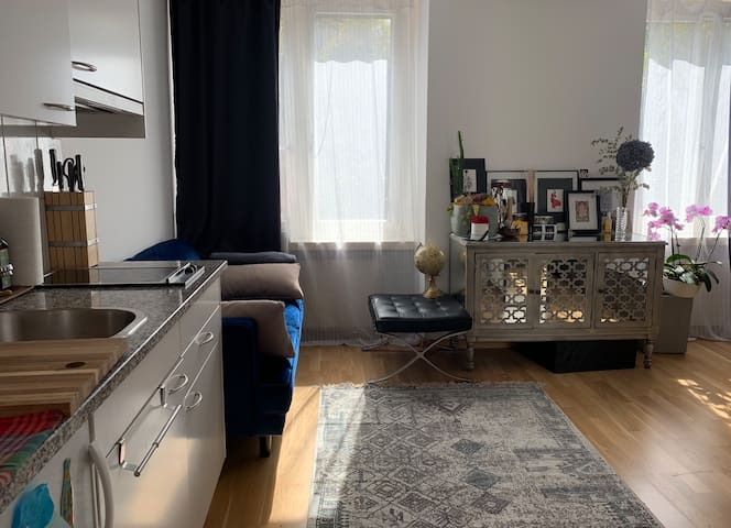 Cute and central studio. 10 min to HB or lake