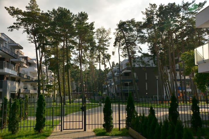 Apartament Pod Sosnami/ Pine Apartment