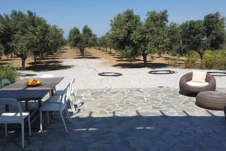 The Saint George -- Villa Amongst the Olive Groves