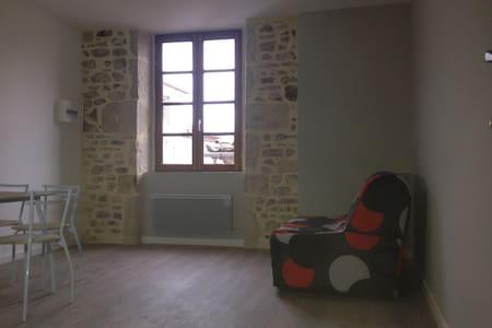 Studio 24 m2 avec du charme centre ville d'Aubenas - Aubenas - Huoneisto