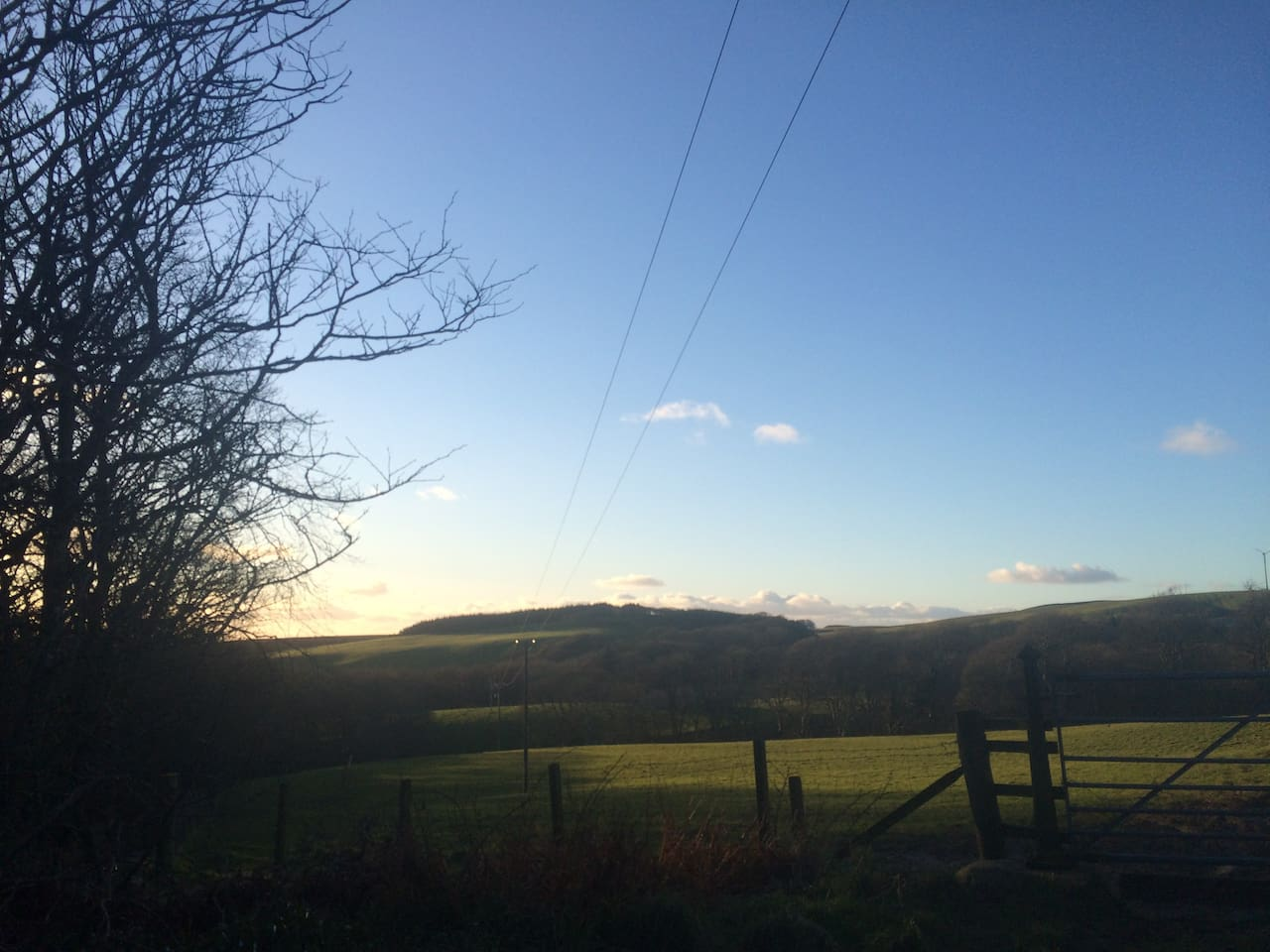 This is the view from the cottage. Wake up to birdsongs!