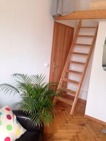 Hinter der Eingangstüre befindet sich eine ausziehbare Treppe zum Hochbett.