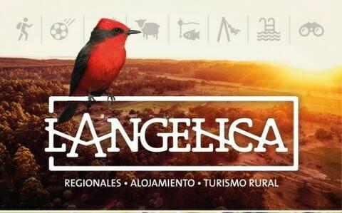 """Establecimiento La Angélica""""El Zorzal"""""""