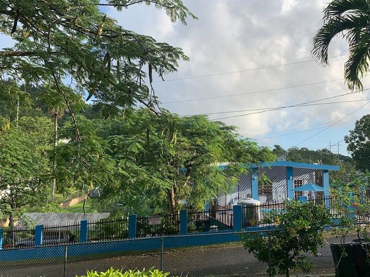 Flamboyan House near The Yunque, Rio Grande, PR