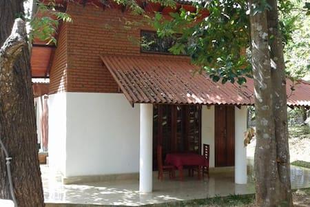 Vaana B&B Triple Room for 2 People Close to Lake - Habarana - Villa