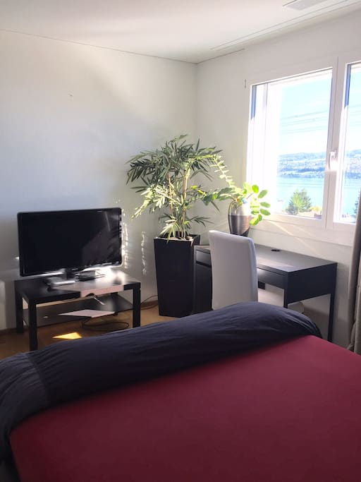 Own TV and desk - Wifi and view to the lake