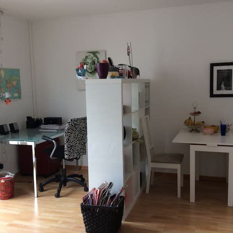 Cozy studio apt. in city center! - Frankfurt am Main - Apartment