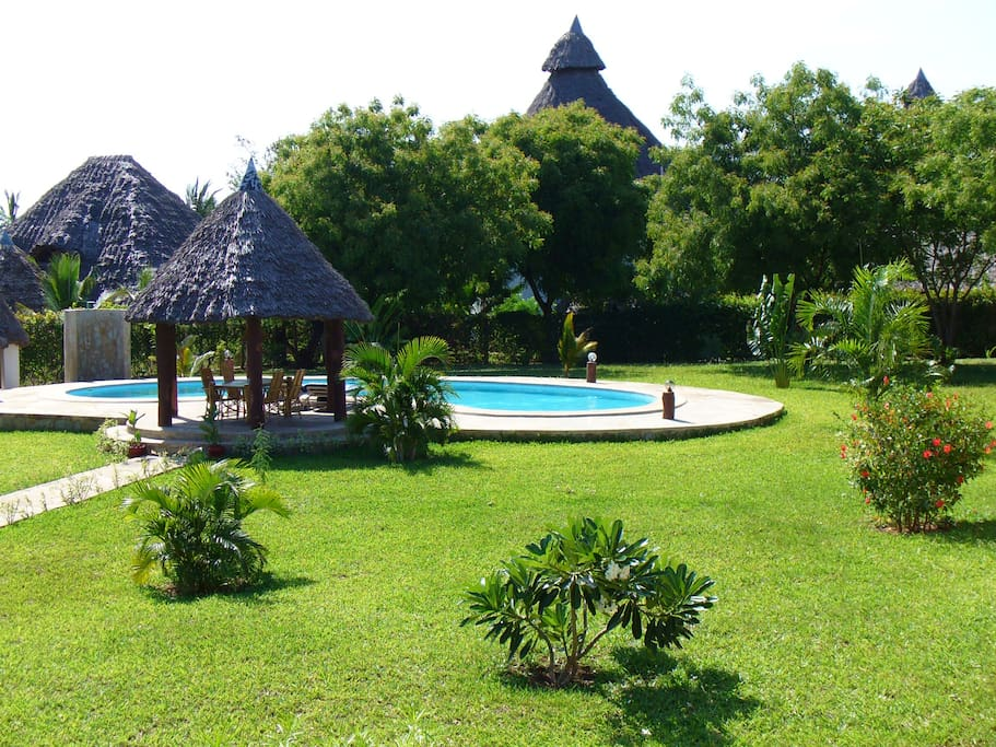 swimming-pool and garden