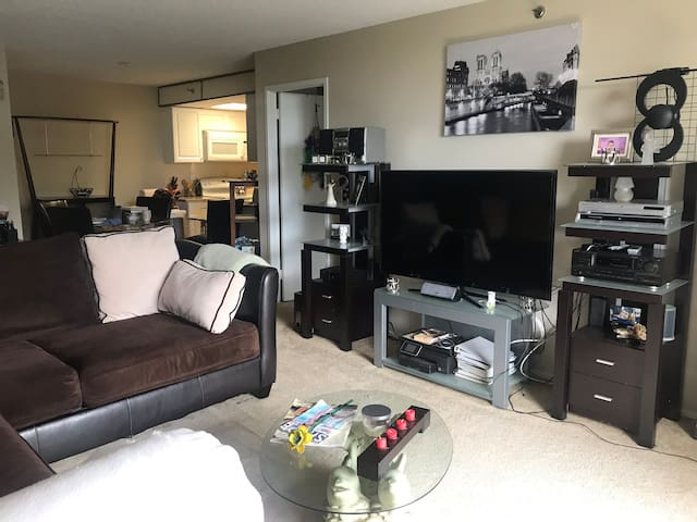 Spacious and Convenient 1Br Condo near Old town