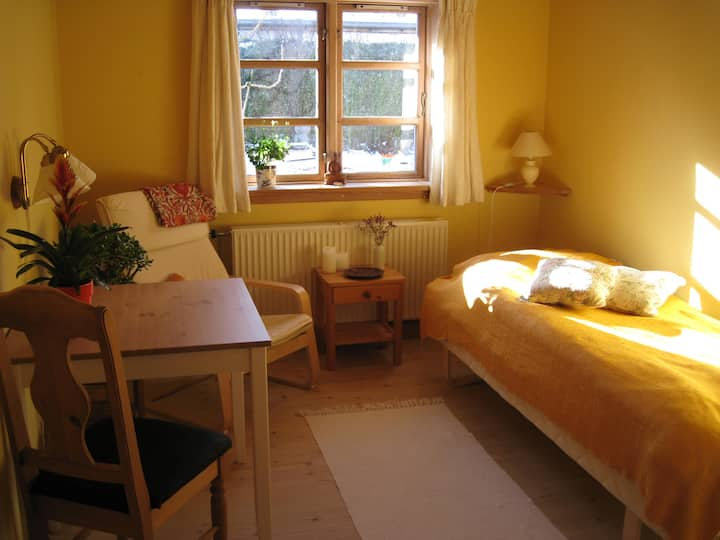 Vegetarian Retreat, in wooden house - Room nr. 2