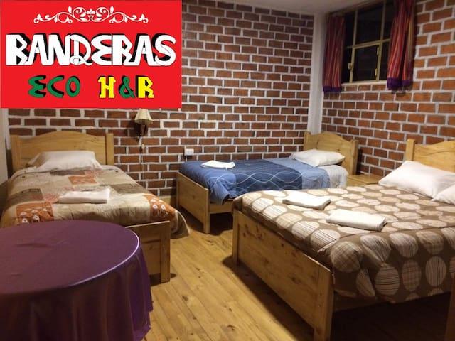 Eco Hotel Banderas (Triple: 3 camas Individuales)