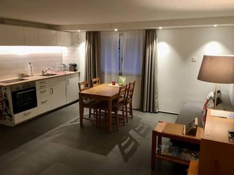 Neue gemütliche Wohnung / Studio nähe Zürich