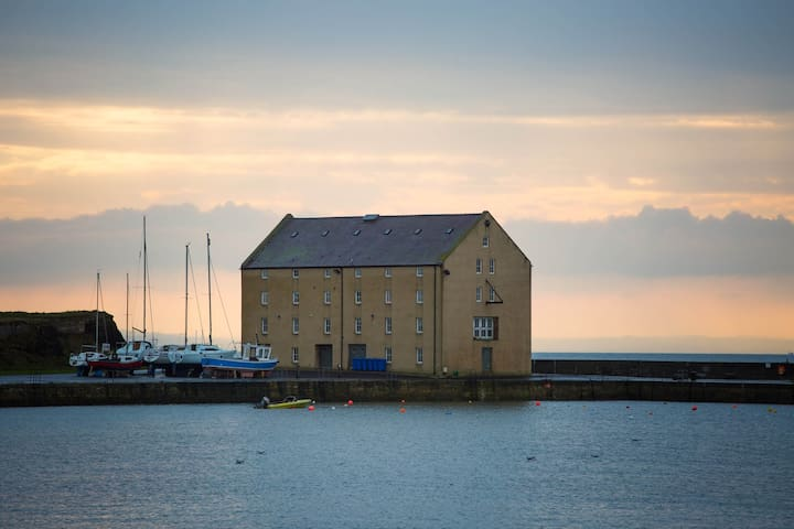 Granary Bay, Elie - Elie - Apartment